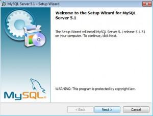 Установка MySQL на Windows (1)