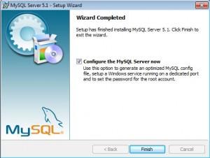 Установка MySQL на Windows (5)